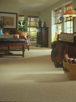 Carpet Floor in Sturtevant, WI